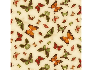 Butterflies - Cream Orange